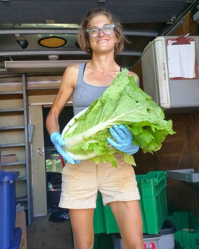 Female farmer holding large head of cabbage