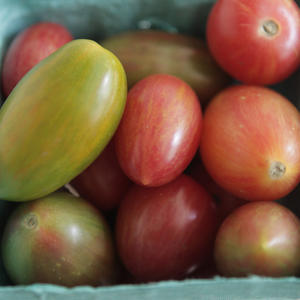 Cherry Heirloom Tomatoes